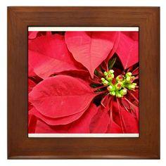 Christmas Poinsettia Framed Tile