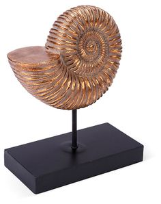 """One Kings Lane - A Golden Opportunity - 14"""" Ammolite Shell Statue on Stand"""