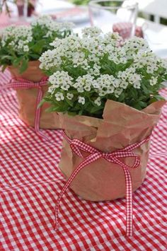 Floral Arrangement - use full pots of alyssum wrapped in craft paper with theme coordinating ribbon. Floral Arrangement - use full pots of alyssum wrapped in craft paper with theme coordinating ribbon. Backyard Party Decorations, Flower Decorations, Wedding Decorations, Wedding Ideas, Wedding Centerpieces, Wedding Table, Easy Table Decorations, Wedding Themes, Trendy Wedding