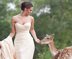 http://www.inarkansas.com/publications/arkansas-bride/real-weddings/editor-favorites#