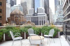 Gardening in the Sky – Balcony & Rooftop Planters Forum