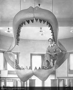 "amnhnyc: In celebration of our new film, Great White Shark, now playing in 3D and 2D at the Museum, today's peek into the archives is a mouthful. ""Seated in fossil shark jaw restoration"" was taken by H.S. Rice in January, 1927, after the restoration of the jaws of the fossil shark, Carcharodon megalodon. Learn more about the prehistoric predator, Carcharodon, and our new film, Great White Shark. AMNH/319969"