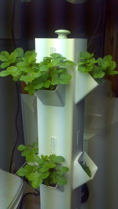 Aeroponic Strawberry Tower. the fertilised water wets the roots inside this tower by spraying a fine mist on the roots. this is all automated and produces food much faster, bigger and tastier than other hydroponic systems. NASA is designing this for space travel.