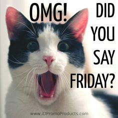 OMG!  Did You Say FRIDAY?