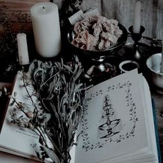 Witch Aesthetic, Book Aesthetic, Character Aesthetic, Aesthetic Pictures, Slytherin Aesthetic, Harry Potter Aesthetic, Disney Films, The Raven, A Discovery Of Witches