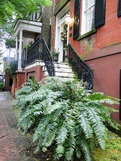 Jolie maison à Savannah