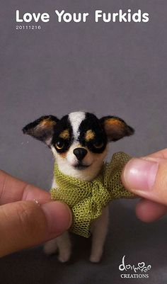 - Chihuahua felted