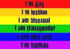 Não Sou Jovem Demais!: Estatuto da Diversidade Sexual