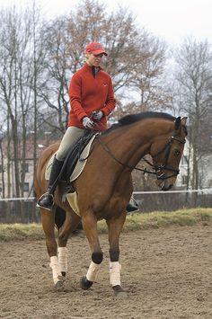 Er gehört zu den größten Knackpunkten beim Reiten: der äußere Zügel. Er ist für Stellung und Biegung entscheidend – und öffnet später die Tür zu allen anspruchsvollen Lektionen. Curly Horse, Horse Training, Equestrian, Riding Helmets, Horses, Fitness, Animals, Ideas, Beautiful Horses