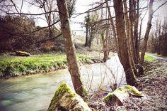 Une virée au parc de la Lawe à Bruay-la-Buissière - Ça drache en Nord