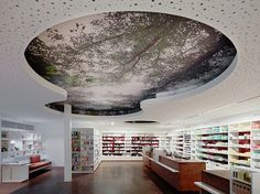 Pharmacy Design | Retail Design | Store Design | Pharmacy Shelving | Pharmacy Furniture |Wolfurt, AUSTRIA, Hofsteig Pharmacy, Dworzak Architekturwerkstatt, www.facebook.com/epsilonbratanis