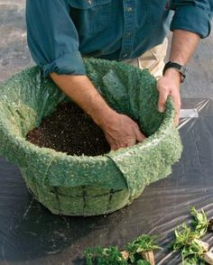 How to Build a Hanging Basket - FineGardening