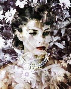 "valérie belin(1964- ), velvet centaurea ""Double Vision: Valérie Belin's Black Eyed Susan"" http://lightbox.time.com/2011/04/13/valerie-belins-black-eyed-susan/?iid=lb-gal-viewagn#4"