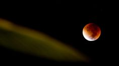 """""""Here Are the Best Images of Last Night's Supermoon Eclipse"""""""