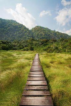 """Parque Nacional Semuliki, Uganda"""