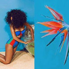 Designer mistura imagens de moda com fotografias de arte e natureza
