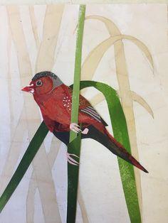 Crimson Finch Organic Form, Natural World, Collage Art, Printmaking, Birds, Texture, Creative, Prints, Painting
