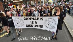 Medical marijuana classified marketplace website for advertising safe cannabis products - medical weeds, clones, dispensaries, delivery service, doctors & clinics, concentrates, equipment etc.  http://www.greenweedmart.com/
