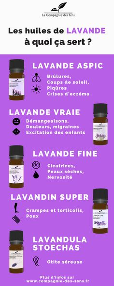 Les huiles essentielles de Lavande il en existe plusieurs alors on a décidé d здоровье Fitness Workouts, Beauty Care, Diy Beauty, Coconut Oil Uses, Naturopathy, Fitness Gifts, Lavender Oil, Lavender Doterra, Health Problems