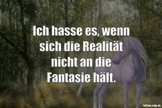 Ich hasse es, wenn sich die Realität nicht an die Fantasie hält. ... gefunden auf https://www.istdaslustig.de/spruch/1800 #lustig #sprüche #fun #spass