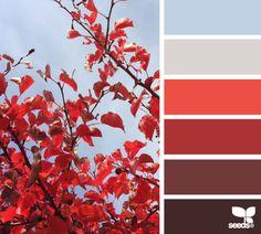 Autumn Sky - http://design-seeds.com/index.php/home/entry/autumn-sky