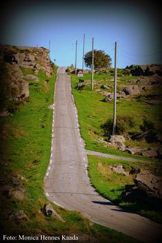 #norway #greenisland #endless #road
