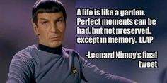A life is like a garden. Perfect moments can be had, but not preserved, except in memory.  LLAP