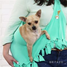 Learn how to make your own DIY dog carrier for your on-the-go days with this easy no-sew video tutorial.