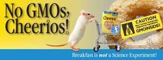 No GMOs, Cheerios! Join us and call on General Mills to remove GMOs from their products here: http://www.greenamerica.org/pdf/2013-Deception-at-General-Mills-CSR-Report.pdf