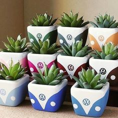 new Ideas succulent painting clay pots Clay Pot Crafts, Cement Crafts, Diy And Crafts, Painted Plant Pots, Painted Flower Pots, Decorated Flower Pots, Ceramic Plant Pots, Painted Pebbles, Plant Painting