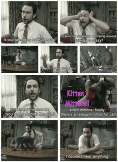 laughIs your cat constantly stomping around driving you crazy? Kitten Mittons! Charlie Kelly. It's Always Sunny in Philadelphia