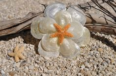 Seashell Flower with Starfish Barrette - Great for Beach Weddings,  Summer Beach Hair, Surfer Girl. $15.00, via Etsy.