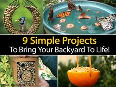 9 Simple DIY Projects To Bring Your Backyard To Life -