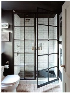 Coastal shower doors  gridscapes