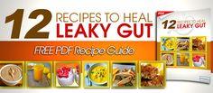 Regain Your Terrain Digestive Health Protocol - DrJockers.com