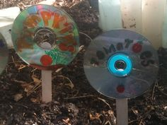 Old CDs as plant markers... brilliant! via Boulder Families