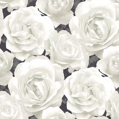 Grandeco Photographic Rose Wallpaper in White and Black – 923026 in Home, Furniture & DIY, DIY Materials, Wallpaper | eBay