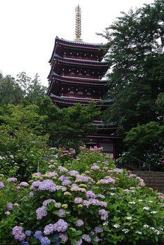 Hondo-ji temple, Chiba, Japan. Study Abroad at our program through Chiba University!