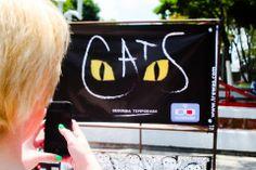 Realidad Aumentada de Cats en la Universidad Panamericana