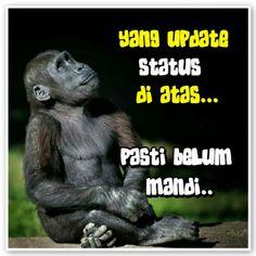 #mandi Memes Funny Faces, Funny Humor, Funny Quotes, Diy Interior Doors, Letter Door Hangers, Door Quotes, Quotes Lucu, Cruise Door, Haha
