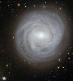 Spiral galaxy NGC 4921