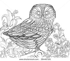Coloring Book For Adult Owl Night