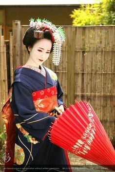 Geisha Japan, Geisha Art, Japanese Costume, Japanese Kimono, Yukata, Japanese Beauty, Asian Beauty, Japan Tag, Memoirs Of A Geisha
