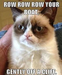 Funny pictures about Meet Grumpy Cat. Oh, and cool pics about Meet Grumpy Cat. Also, Meet Grumpy Cat. Grumpy Cat Quotes, Meme Grumpy Cat, Angry Cat Memes, Angry Cat No, Grumpy Cat School, Gato Grumpy, Grumpy Kitty, Grumpy Cat Disney, Funny Cats