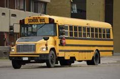 """Why Are School Buses Yellow?"": Fun facts justifying a common school year sight"