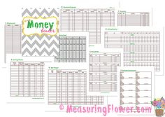 Our Money Binder {Plus Free Printables} - Measuring Flower...this is where i get my printables for our financial binder. Really great easy to use system