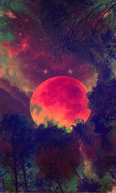 gif lost beauty art tree Black and White skyline beautiful sky trees dream moon imagine night clouds nature amazing fantasy cloud artsy fog The Moon night time nightmare-of-mine Beautiful Moon, Beautiful World, Sun Moon, Stars And Moon, Moon Shine, Illustration, To Infinity And Beyond, Belle Photo, Pretty Pictures
