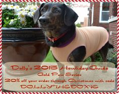Dolly's 2015 Howliday Guide 20% off Gold Paw Series with code DOLLYTHEDOXIE thru Chirstmas
