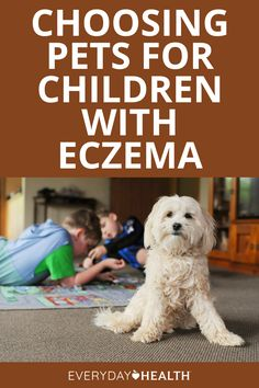 A family pet is a welcome addition to many homes. But if your child is at risk for or has atopic eczema, do this homework to choose wisely.