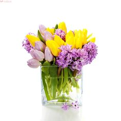 Candy Girl – Buchet cu lalele si zambile Pictures Of Spring Flowers, Spring Flower Bouquet, Spring Collection, Flower Wall, Spring Time, Glass Vase, Gifts, Nature, Spring
